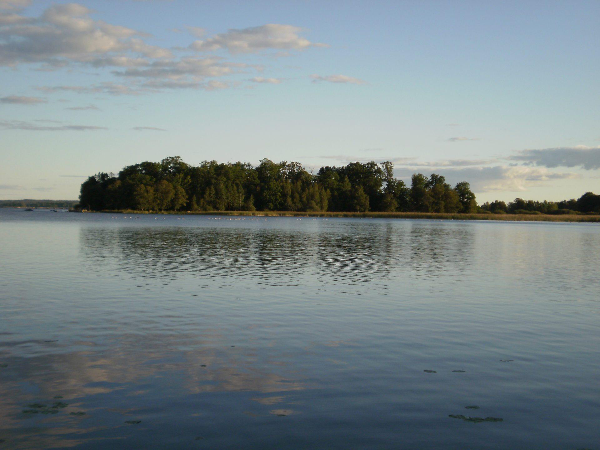 Lago sueco con árboles al fondo
